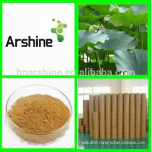 Natural Organic Lotus Leaf Extract,Lotus Leaf Extract Powder,slimming tea