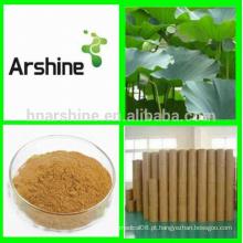 Extracto orgânico de folha natural de lótus, pó extracto de folha de lótus, chá emagrecedor