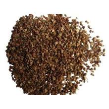 Fabricación de calidad confiable Extracto de cnidio común Extracto de Fructus Cnidii / Extracto de Cnidium Monnieri