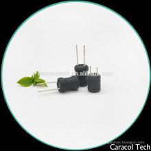 Inductor de potencia de inmersión variable