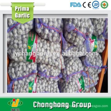 2016 alho branco puro fresco na China