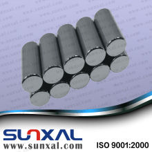 Strong Power Sintered Neodymium Magnetic Motor High Performance