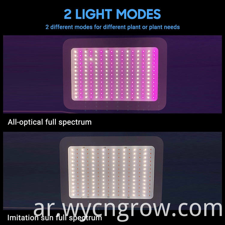 1000w grow light double switch