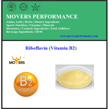 High Quality Low Price Food Grade Riboflavin (Vitamin B2)