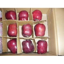 Pomme fraîche Huaniu 2015