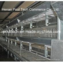 Automatischer Galvanisierungs-Broiler-Hühnerkäfig (H-Typ)