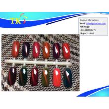 Cat eye 3D magnetic chameleon powder effect pigment for nail polish gel