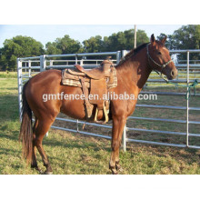 Galavnized horse fencing horse