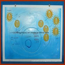HIV-Virus-Modell für Schulstudien