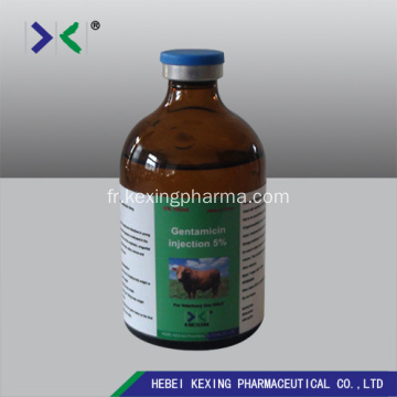 Gentamicin Injection 10% Bovins
