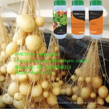 Categoria agrícola líquida do adubo do ácido aminado do condicionador de raiz