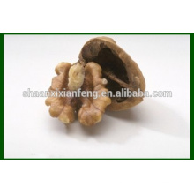 Hot Sale Manufactory Wholesale Price Walnut Kernel