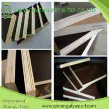 Poplar Core Brown Color Shuttering Plywood with Cheap Price