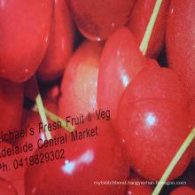 Promotional Printed Polypropylene Reusable colour nonwoven