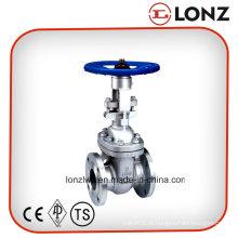 ANSI em aço inoxidável flangeado válvula de porta com volante
