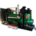 1000kVA LPG Elektronische Generator-Sets
