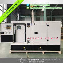 30 kva Lovol 1003G Motor Dieselgenerator Preis