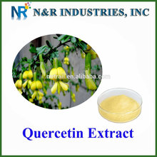 High Quality 98%powder Quercetin