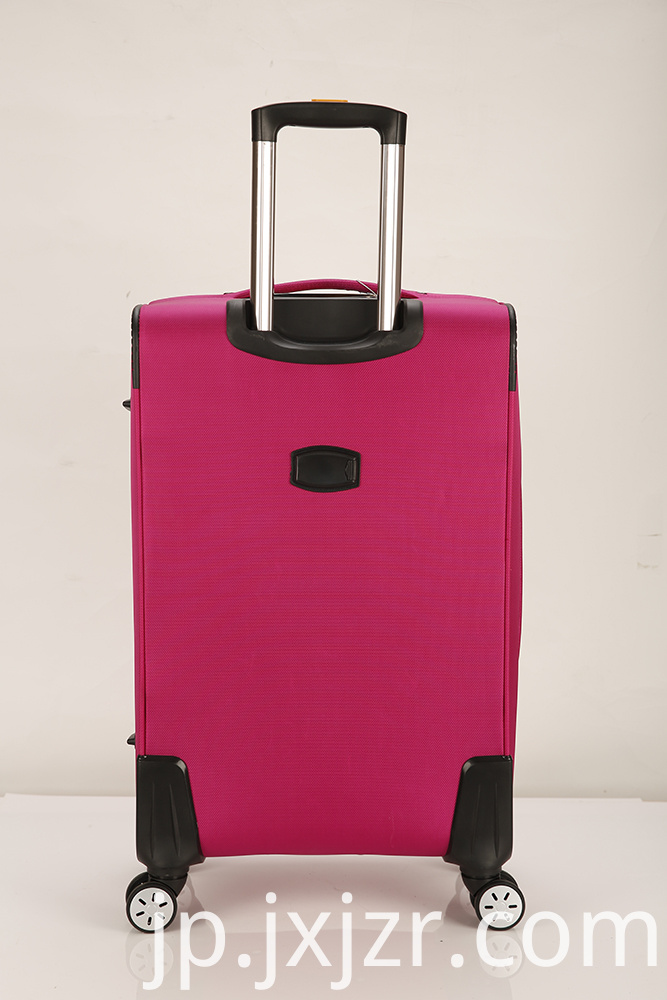 Pink Luggage Case