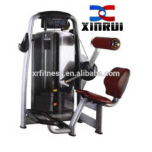 Gym Fitness Equipment Lower Back Commercial Exercise Machine