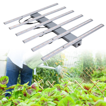 480W Grow Light Bars para el cultivo de tomates