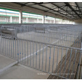 Pig Farming Equipment Pig Fatten Crate