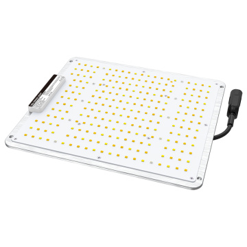 100W LED Plant Grow Light pour Veg