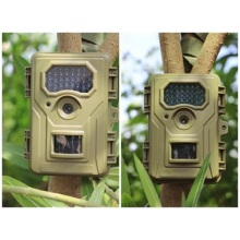 Hidden Trail Video Camera for Hunting