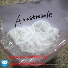 99% de bodybuilding de cycle de PCT Anastrozol 120511-73-1 Arimidex