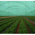 Best Quality Crazy Price Greenhouse Sun Shade Cloth