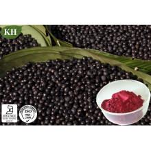 Polifenol anti-oxidante natural alto 20%, extrato de 40% de Acaiberry