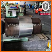 Bande en acier inoxydable 316L avec de bonne qualité (bande inox 316L pour spirometallique)