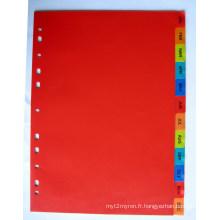 12 pages couleur PP Index diviseur avec mois imprimés (BJ-9023)