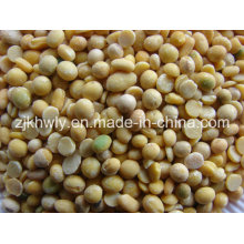 Soy Beans Without Shell