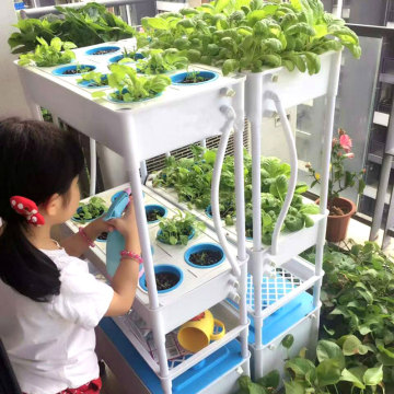 Mini Garden Vertical NFT Hydroponic System For Lettuce