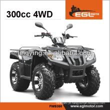 moto-quatro 4 rodas