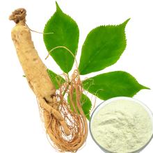 Ginsenosides Organic Ginseng Extract