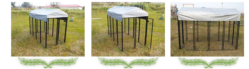 large wire welded dog kennel