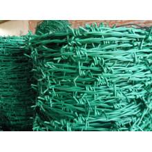 Fil barbelé en PVC vert