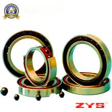 China Fabricante de alta qualidade Zys Hybrid Rolamentos de esferas de cerâmica