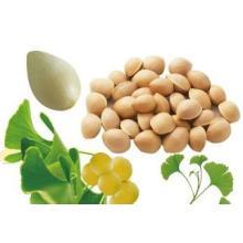 (Ginkgo Biloba Extract) ---Whitening and Anti-Wrinkle Ginkgo Biloba Extract