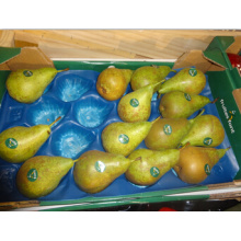 Vacío de empaquetado de productos frescos que forma el trazador de líneas plástico disponible de la fruta del hexágono celular para la pera