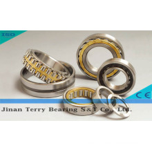 The High Quality Roller Bearings (NN3007)