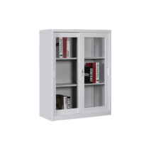 Small Half Height Cabinet with Glass Sliding Door