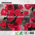 Xinsheng marca descartável absorvente antiderrapante tapete do banheiro