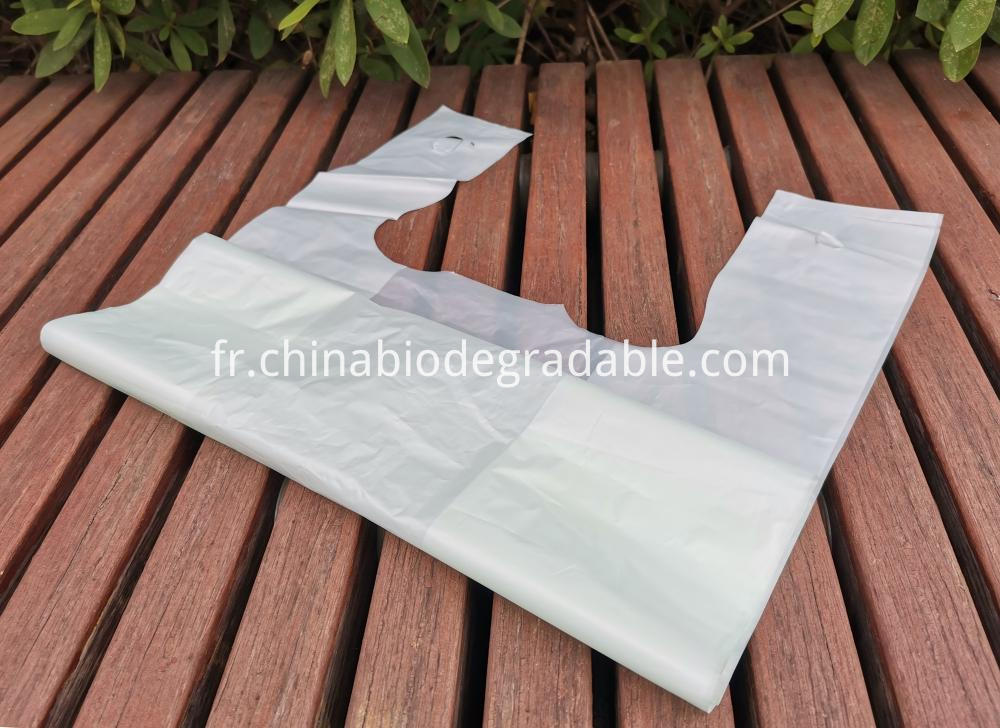 Compostable Shopping plastic bags