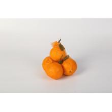Obstverpackung Netzbeutel Orange Nabel Orange