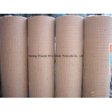 China Supply professional Stainless Steel Welded Wire Mesh/Galvanized Welded Wire Mesh /PVC Welded Wire Emsh
