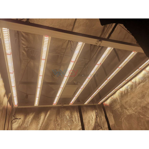 il tipo led xl1000 coltiva la luce 1000W