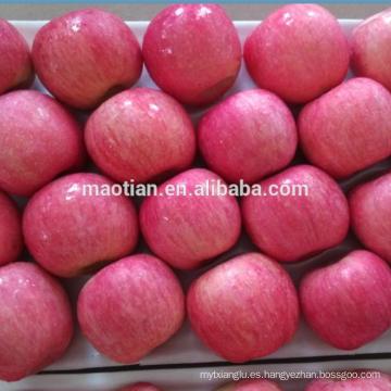 Rubor de Apple Fuji Rosy para Indonesia